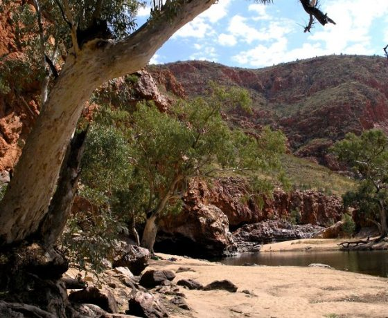 The popular Ormiston Gorge waterhole   which attracts tourists and wildlife alike at different times of the day is up to 14 metres deep. But how many tourists explore the full beauty of the gorge beyond the swimming hole?