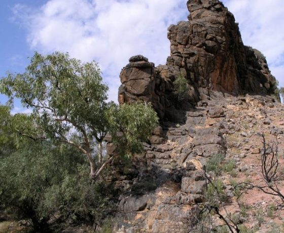A dolomite column laid down in a salty lake 800 million years ago, Corroboree Rock is of ceremonial significance to the East Arrernte People