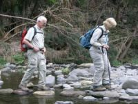 Walking Carnarvon Gorge - our tour guides are providing private tour guide assistance