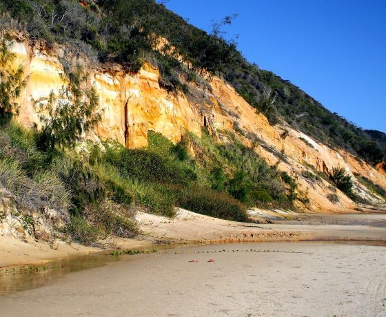 A 4WD day safari to world heritage Fraser Island opens with a beach journey beside nature's gallery of multi-coloured sand cliffs