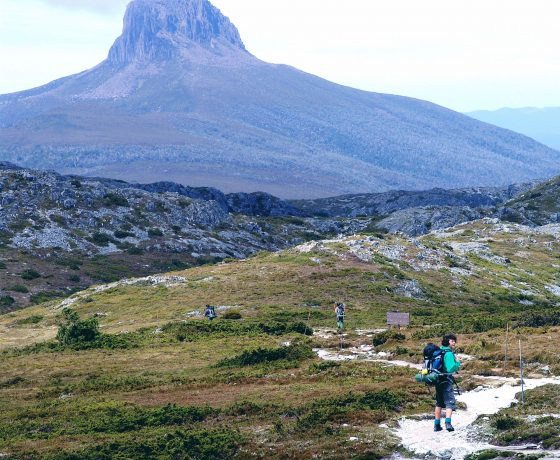 Family of walkers on overland track leave Cradle Mountain for Barn Bluff