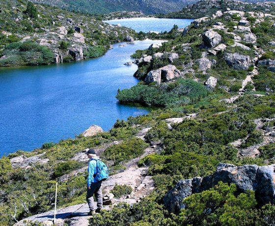Alpine boulder field is home to the beautiful Tarn Shelf in Mt Field National Park
