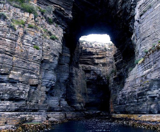 Blow holes, caverns and the Tasman Arch have resisted the forces of the Tasman Sea for centuries