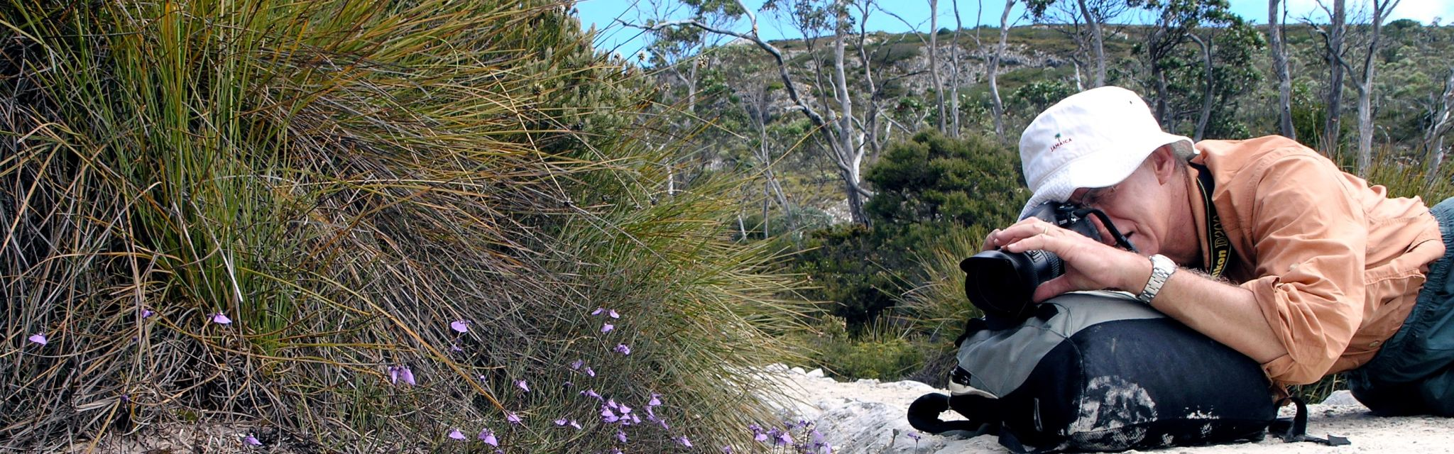 Tour guest taking wildflower photos on our Tasmania National Parks Tour