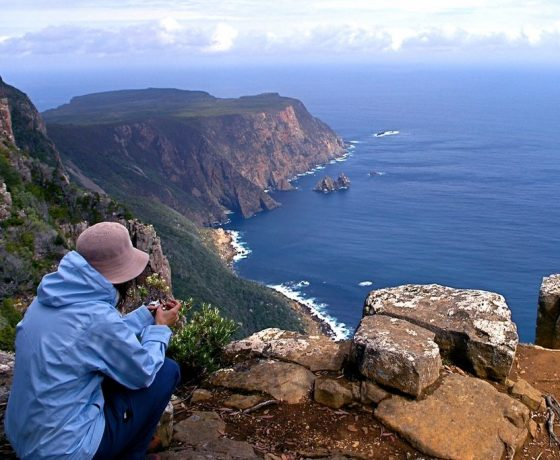 Contemplate the spectacle of Cape Raoul's 300m high cliffs in Tasman National Park defying forces of the great southern ocean