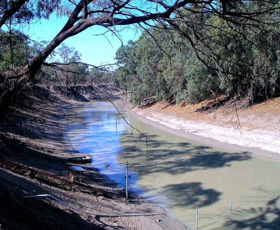 Once the river highway for 200 paddle steamers, the Darling River is still a legendary waterway and focus for outback NSW adventure travel. Flood plains are up to 70kms wide