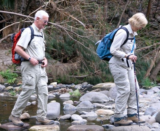 A visit to Carnarvon Gorge will be remembered for  the joys of rock hopping the many creek crossings as you explore the gorge, feet first