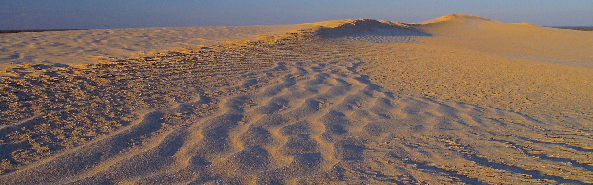 Rippled Dune Mungo National Park, image from a Nature Bound Australia tour