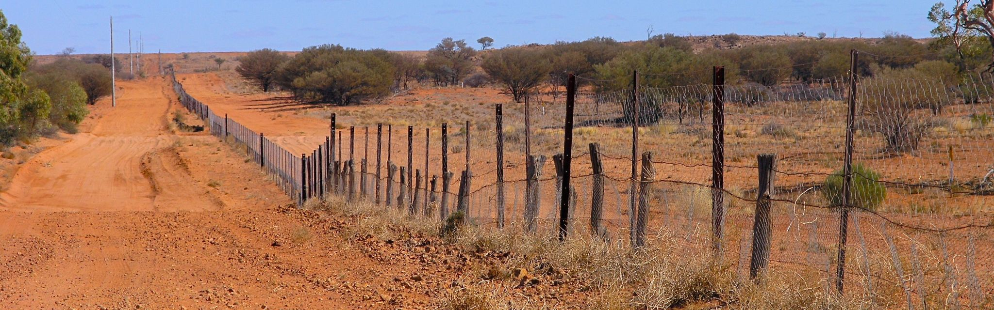 Wild dog barrier fence near the Corner Country.