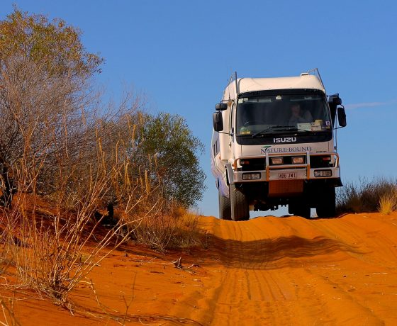 Naturebound 4WD bus crossing the Strzelecki Desert en route to the isolated outpost of Innamincka