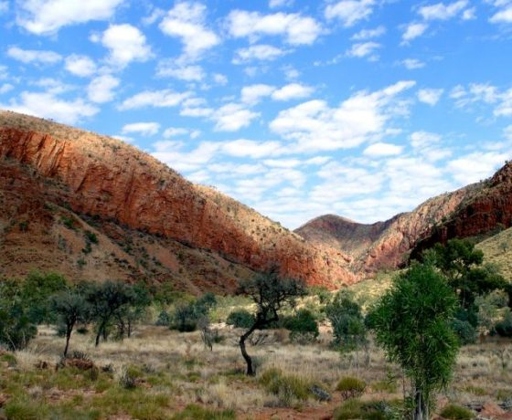 A jewel in the Central Australia landscape is Ormiston Gorge where earthly upheavals have created a colourful spectacle worthy of our three hour walk