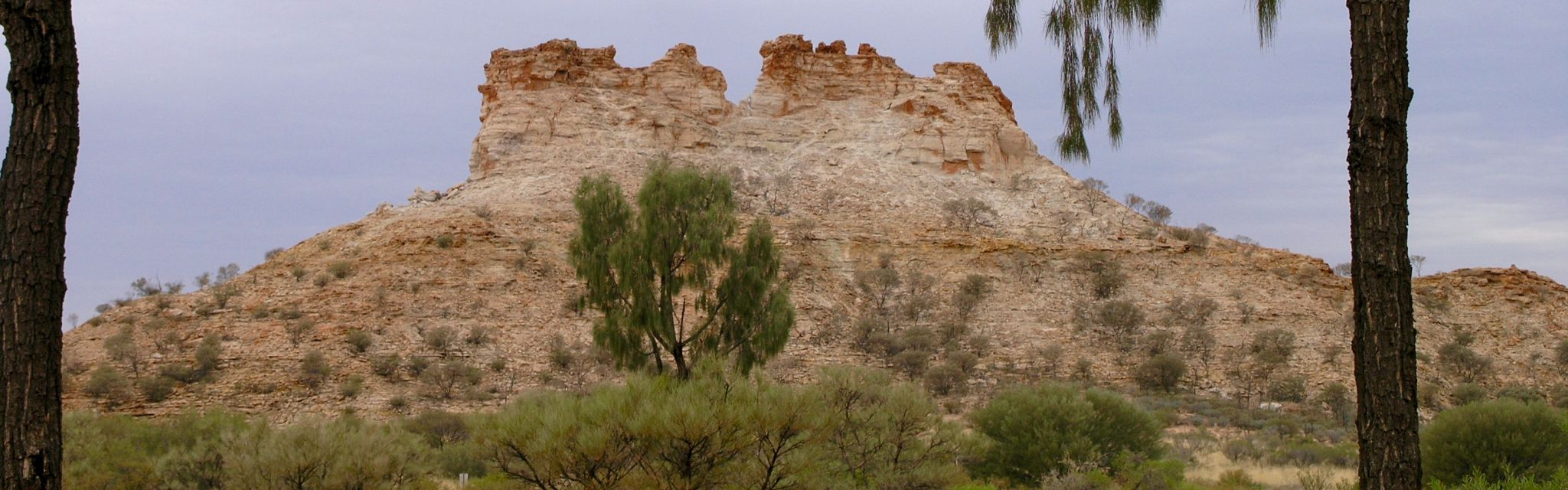 Pillars in the Simpson Desert, image from a Nature Bound Australia Central Australia Red Centre tour