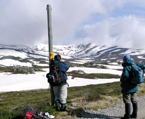 An occasional 4 day tailored tour extension to the rooftop of Australia with a summit walk of Mt Kosciuszko can be considered at the request of small groups of guests