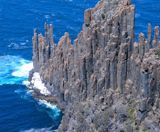 Columnar joints of dolerite tower over the surging ocean while shelves below are home to sea lions and sea birds