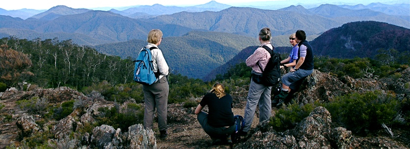 Wrights Lookout over the wilderness, New England National Park