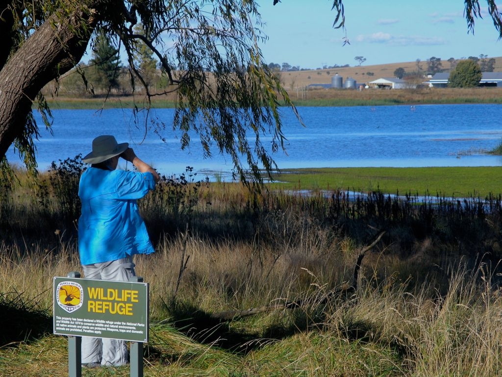 Birding is one of many special interest pursuits of Nature Bound Australia's experiential tours