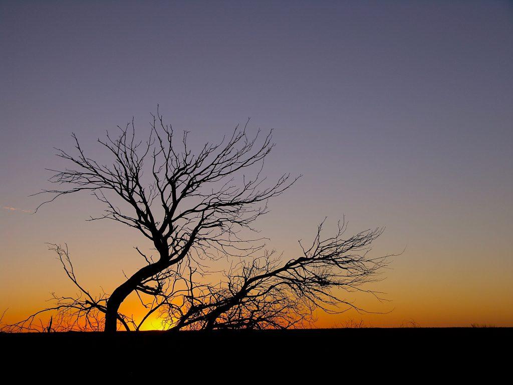 Sunset across the vast horizon of the Corner Country near Tibooburra