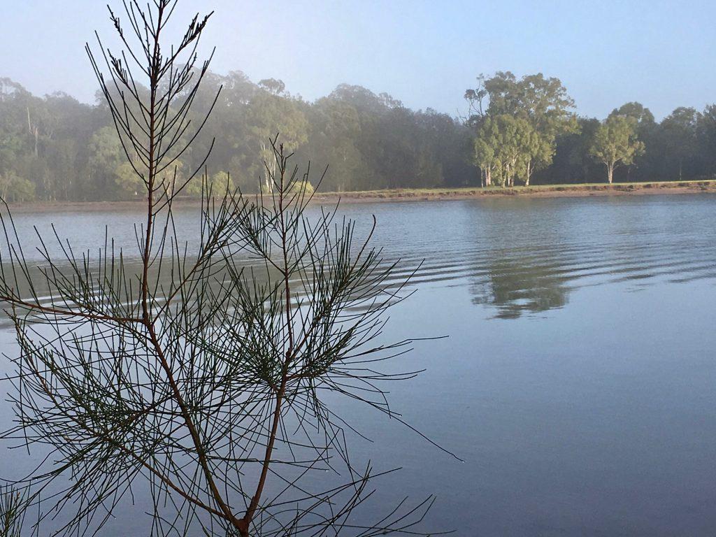 Coomera River scene