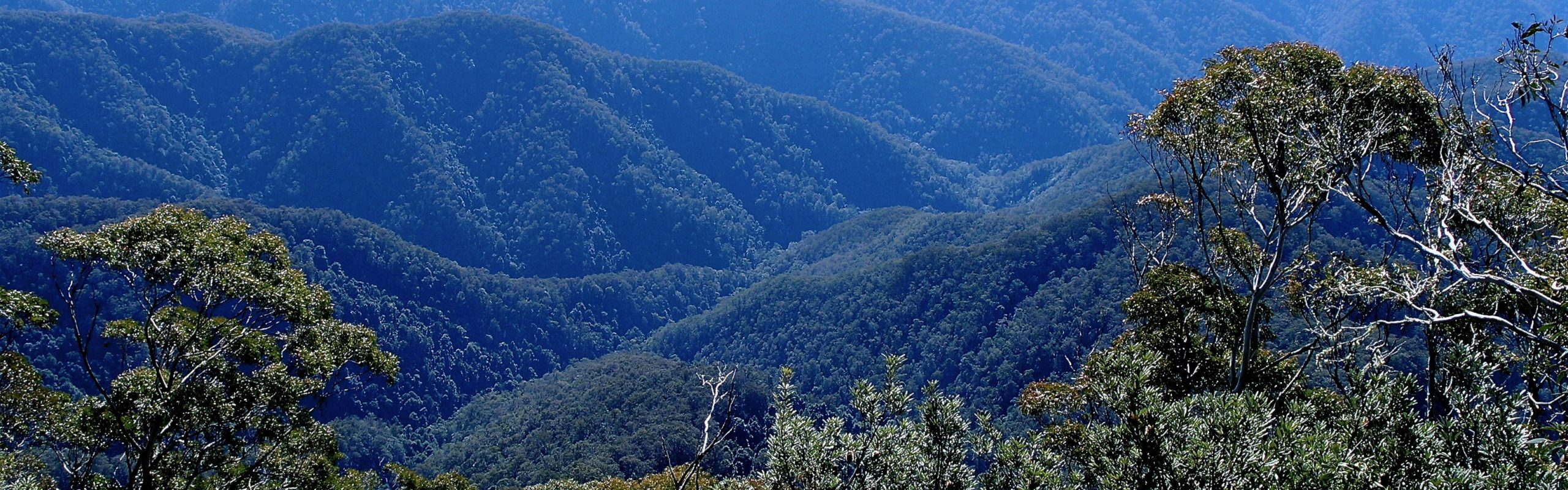 View of New England National Park wilderness on World Heritage Gondwana Tour
