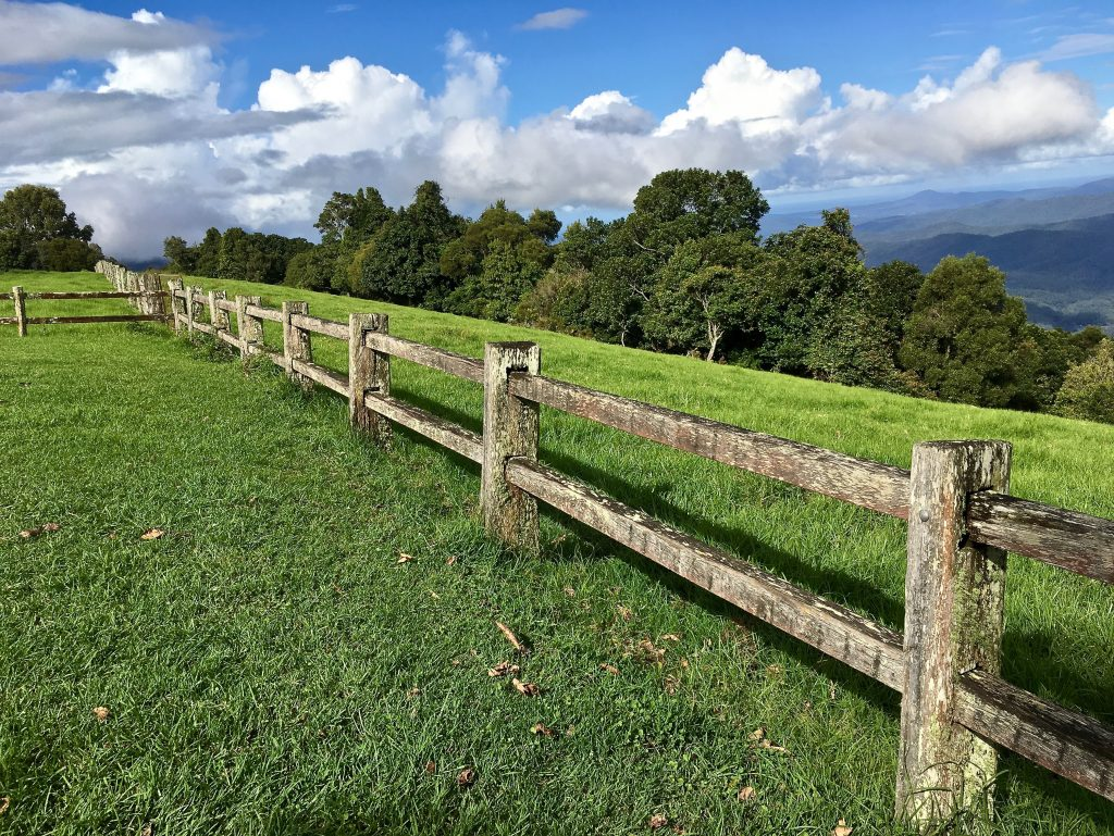 Post and Rail fence for sitting on in the Coronavirus, Future Shock debate