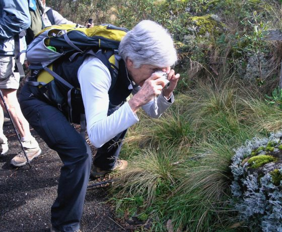 Guests find fascinating subjects to photograph on all tours while connecting to nature
