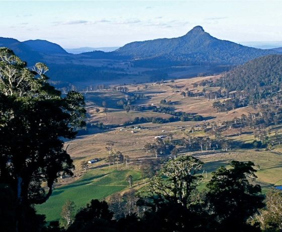 Enjoy the crisp mountain air and expansive views over The Head of the Darling River catchment from the world heritage rainforest clad Border Ranges