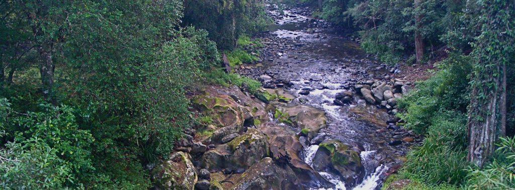 Wilderness River Barrington Tops NP