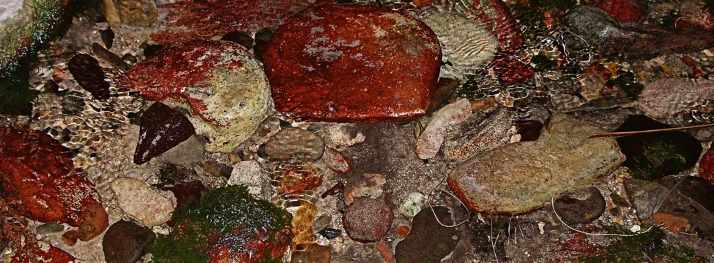 Ripples over Rocks, Wards Canyon, Carnarvon Gorge, Uniquely Australia Tour